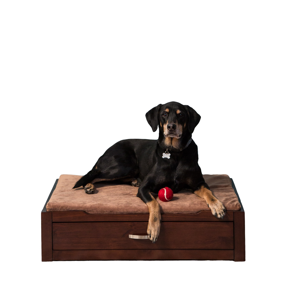 Coffee Dog Storage Bed with Camel cushion